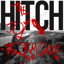 The Joy Formidable – Hitch