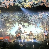 Wilco, William Tyler [14.11.2016: Museumsquartier, Wien]
