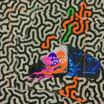 Animal Collective – Tangerine Reef