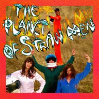 Tropical Fuck Storm – The Planet Of Straw Men