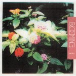 Amultes - Blooming