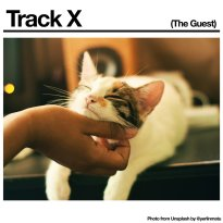 Black Country, New Road – Track X (The Guest)