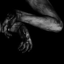 Fawn Limbs – Darwin Falls