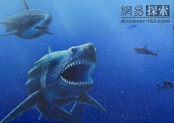 史前 巨鯊 巨齒鯊