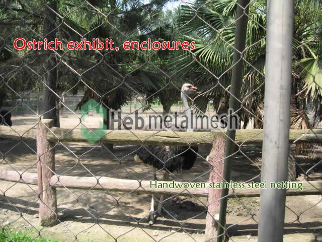 Ostrich exhibit, Ostrich cages, Ostrich enclosures