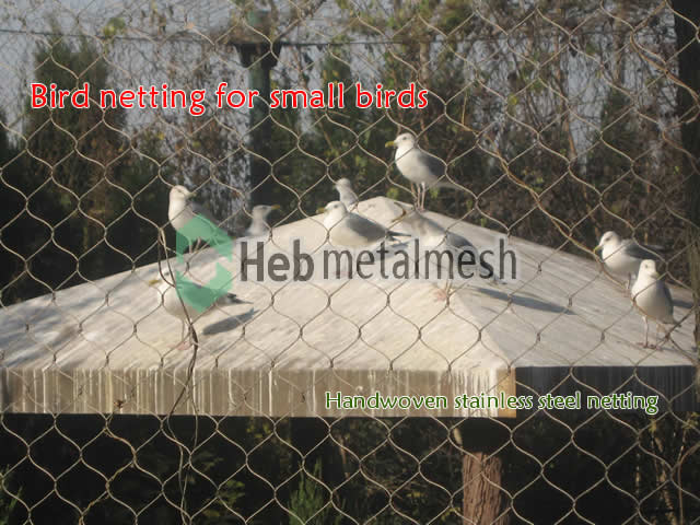 Outside aviary bird netting for finches, mesh netting for finch aviary, small bird aviary mesh