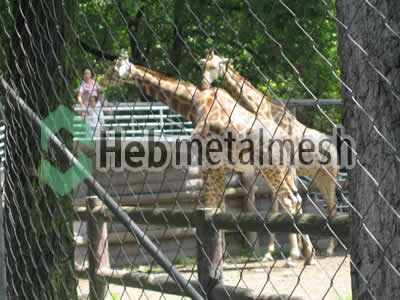 deer exhibit design, zoo deer enclosures plans, zoo deer mesh supplies