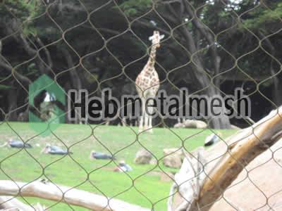 wire mesh for giraffe cage mesh, giraffe perimeter netting, giraffe roof netting supplies