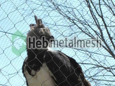 mesh for eagle control mesh, eagle enclousre mesh, eagle cover manufacturer