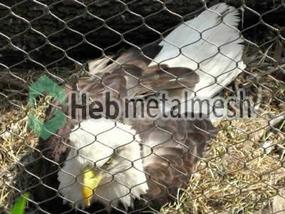 stainless steel eagle roof netting, ealge perimeter mesh, ealge fencing