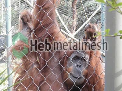 Factory supplies for gibbon exhibit fencing mesh, gibbon enclosures mesh