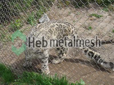 stainless steel mesh for leopard exhibit, leopard enclosures, leopard cage