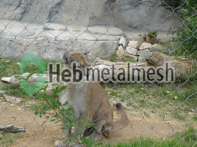 wire mesh for lion cage mesh, lion perimeter netting, lion roof netting supplies