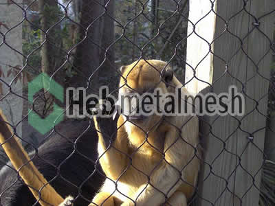 monkey protection fence, monkey enclosures netting, monkey exhibit control mesh specifications