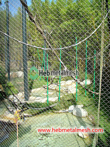 Stainless steel fence mesh for Gorilla enclosure, Gorilla cage ...