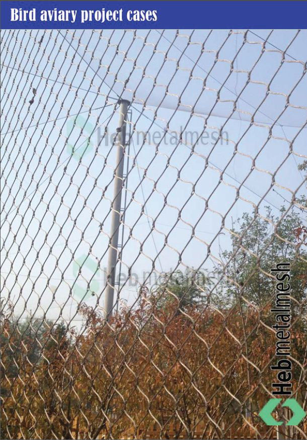 wire rope mesh factory- wire rope mesh for bird aviary containment ...