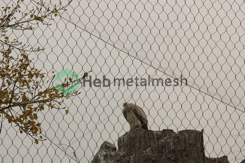 wire rope mesh suppliers – eagle mesh, eagle fence, eagle netting, eagle cage fence, eagle enclosure fencing, eagle safety mesh