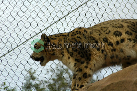 wire rope mesh suppliers – leopard mesh, leopard fence, leopard netting, leopard cage fence, leopard enclosure fencing, leopard safety mesh