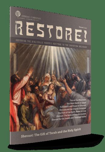 restore-54