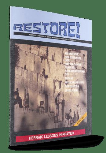 restore-2