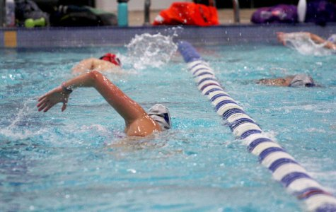 Swim and dive to compete in invitationals Nov. 2 and 4
