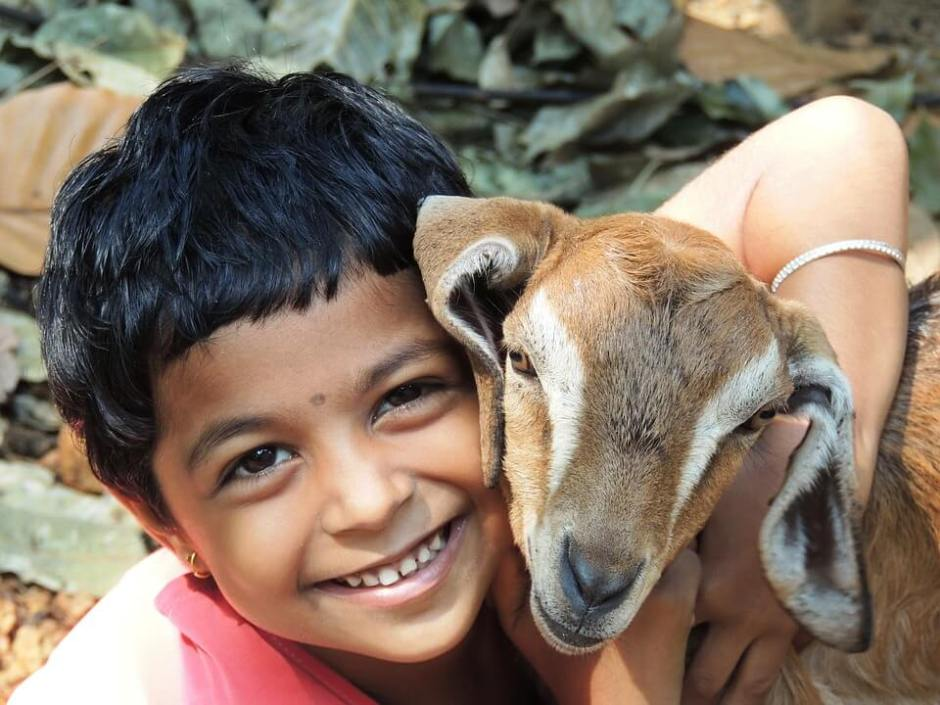 çocuk-keçi-smile