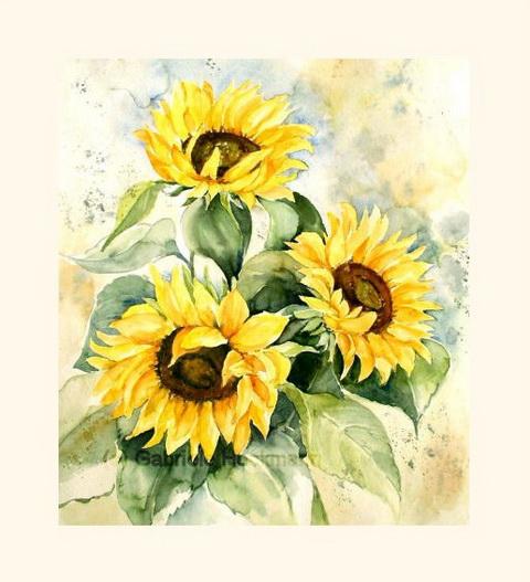Heckmann Aquarelle  Sonnenblumen