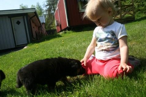 Lilla Bella och Nilla
