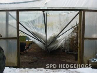 SPD Hedgehogs Nursery