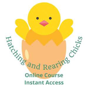 Online Incubation Hatching and Chick Rearing Course