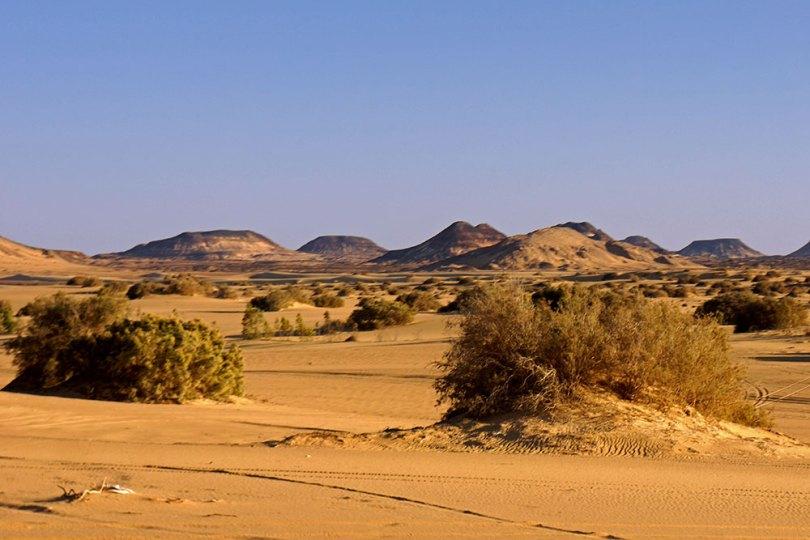 Egypte -Al Bahariya