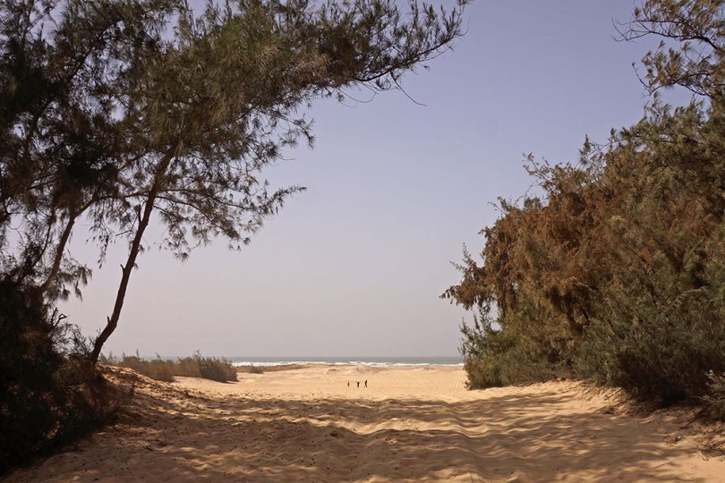 Sénégal - Retba : Dunes