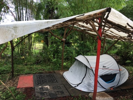 Rainforest Camping in Hawaii