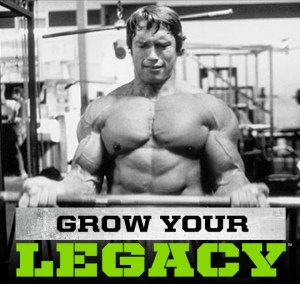 Arnold series iron whey