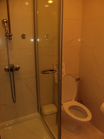 International Business Lounge Moscow Shower