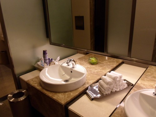 Singapore Air Private Room Bathroom