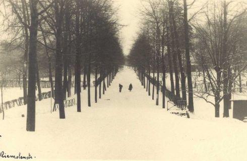 """Bron: Rijckheyt.nl   Oliemolenstraat (1942). """"Steile berg"""". Links en rechts het Aambos."""