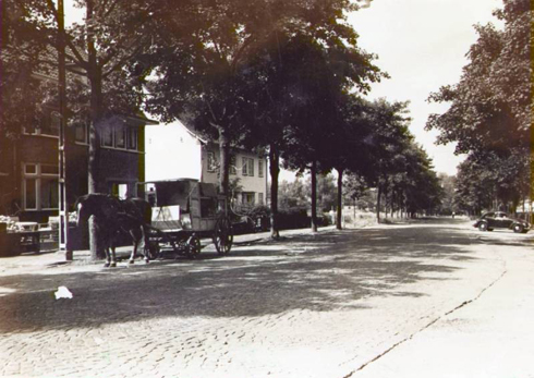 Bron: Rijckheyt.nl | Welterlaan anno 1952