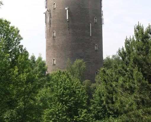 Bron: Willem Jans / Wikipedia