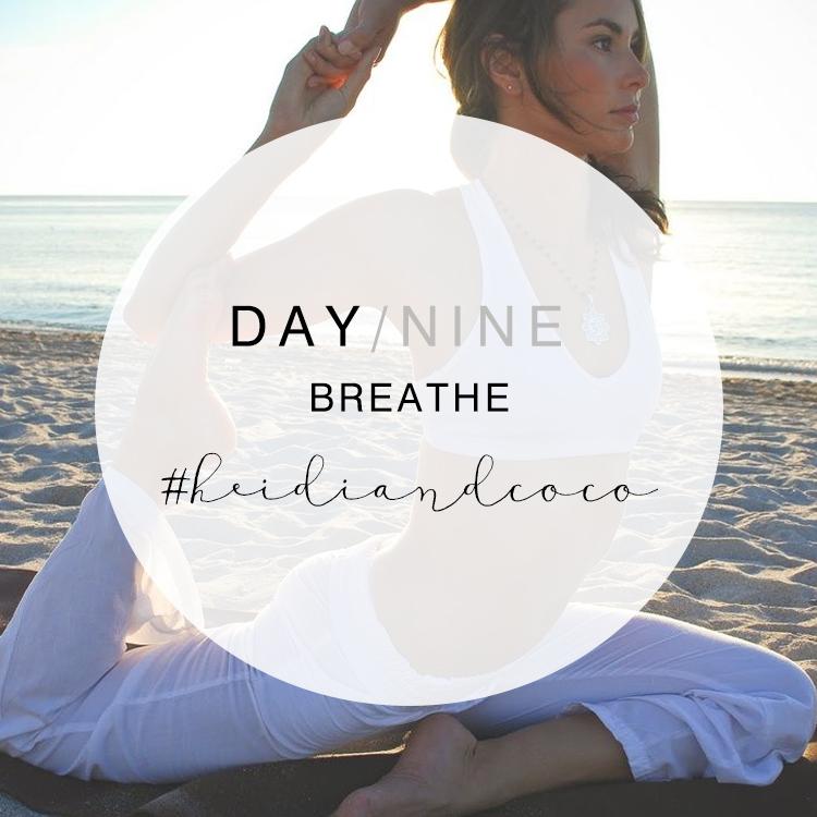 14 Days to Wellness - Day 9 / www.heidiandcoco.com