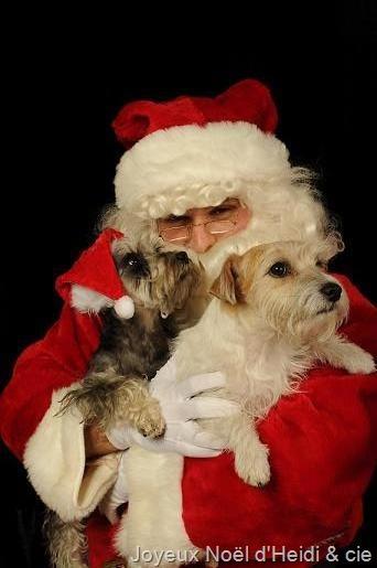 Joyeux Noël 2016 d'Heidi & Cie
