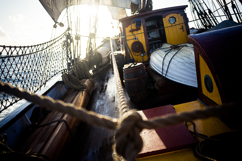 Afin de renforcer la sécurité des lignes de vie sont installées de chaque bords du bateau.