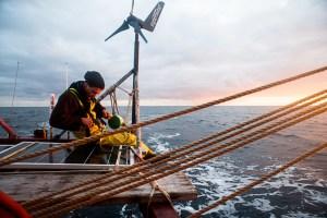 ecologique, energie, verte, renouvellable, wind