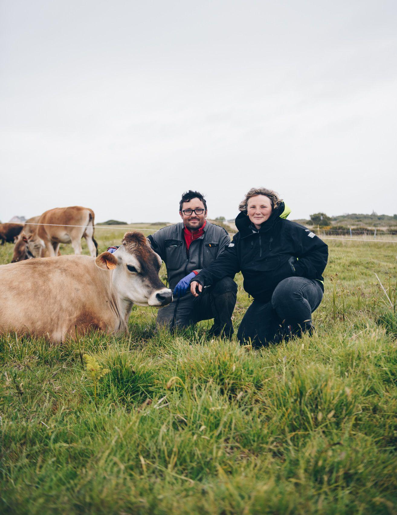 le retour de l'agriculture à Ouessant