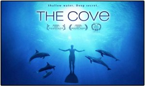 thecove1