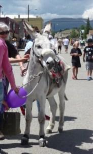 Burro Days, Fairplay, Colorado