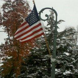 Veterans Day Loveland lamp post