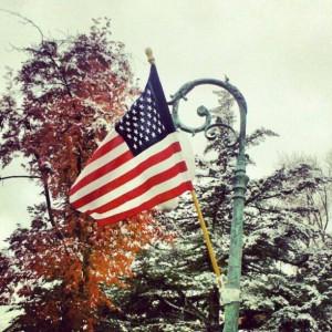 happy Veterans Day flag