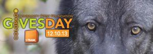 Colorado Gives Day WOLF