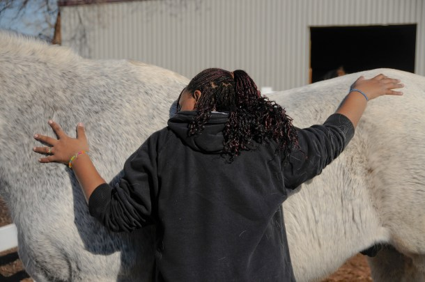 Changing Leads at-risk youth program at Hearts & Horses therapeutic riding center. HeidiTown.om